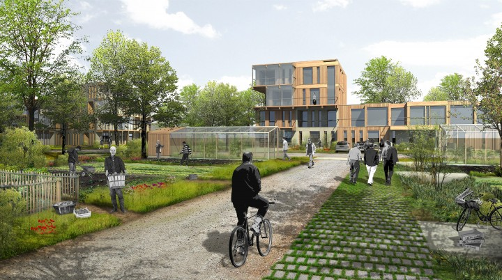 TOU-pers-jardins collectifs 2